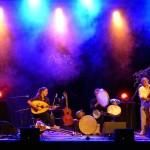 festival Jazz sous les arbres